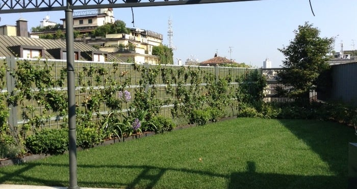 Awesome barriere antirumore per terrazzi ideas idee - Barriere antirumore giardino ...